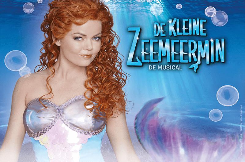 Afbeelding van De Kleine Zeemeermin - De Musical