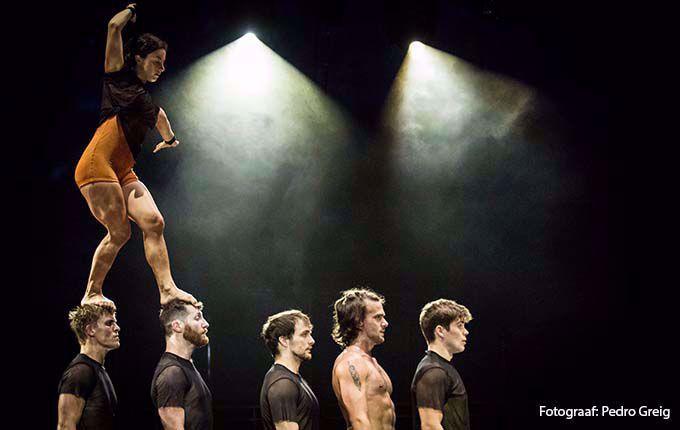 Afbeelding van Carré Cirque
