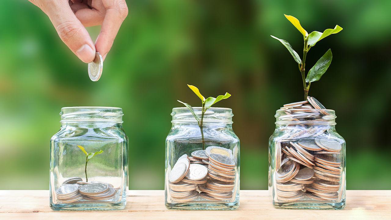 Product afbeelding: Online cursus | Geld besparen en verdienen