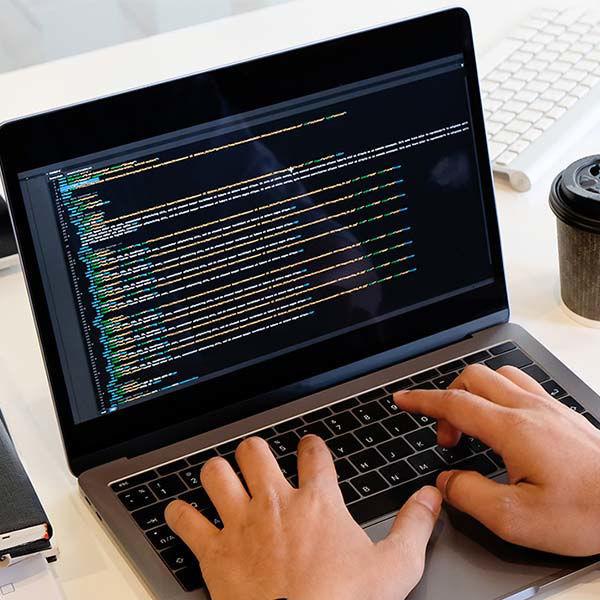 Product afbeelding: Online cursus | Basistraining website programmering
