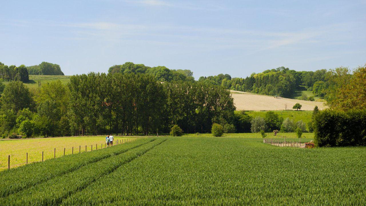 Verblijf in het centrum van Sittard in Limburg o.b.v. halfpension
