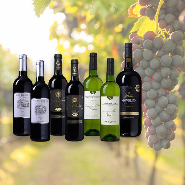 Product afbeelding: Wijnvoordeel BBQ wijnpakket + Magnum