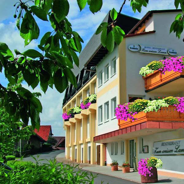 Product afbeelding: Ontdek het Duitse Odenwald