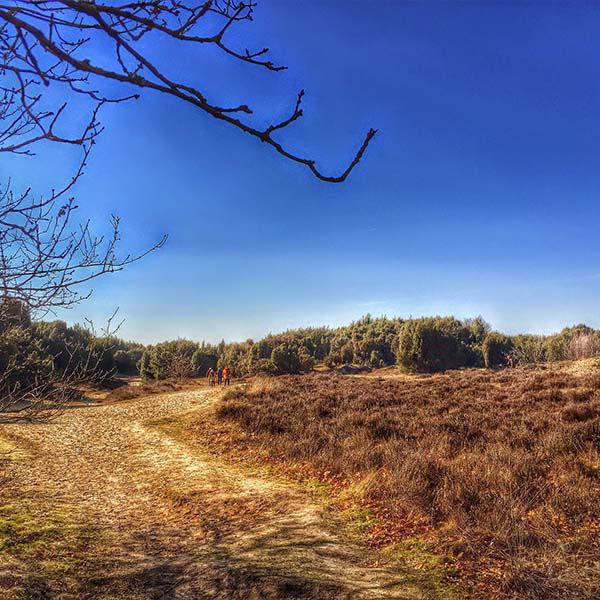 Korting Door de Kop van Drenthe