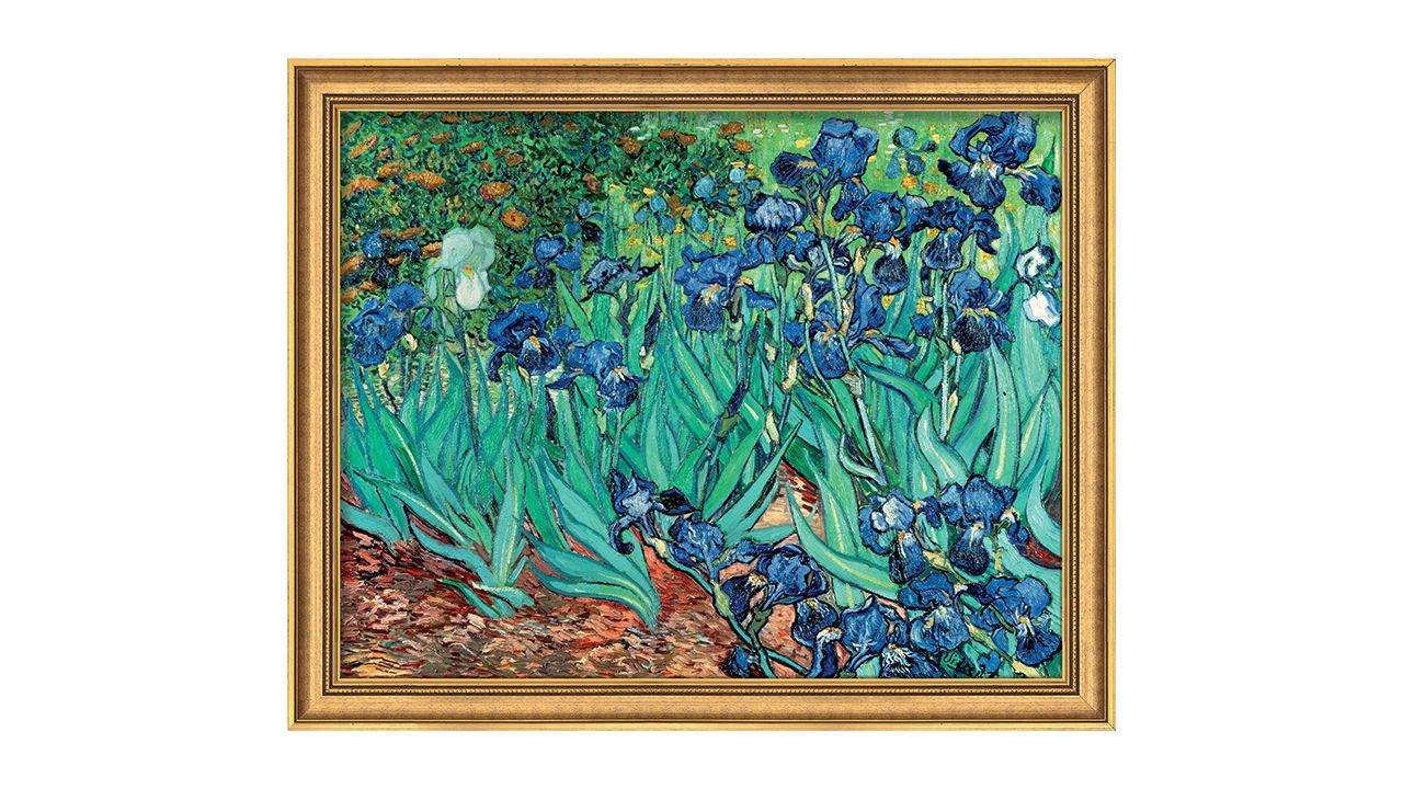 Product afbeelding: Schilderij 'Iris (Irissen)'
