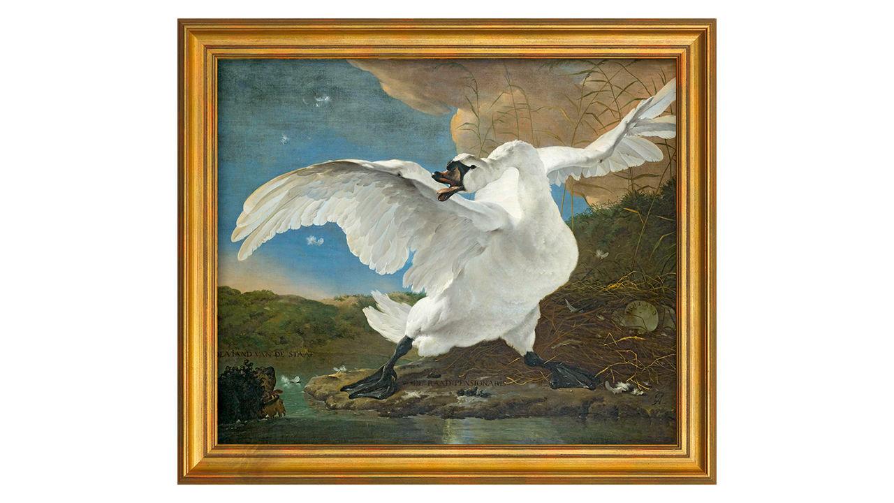 Product afbeelding: Jan Asselijn schilderij 'De bedreigde zwaan'