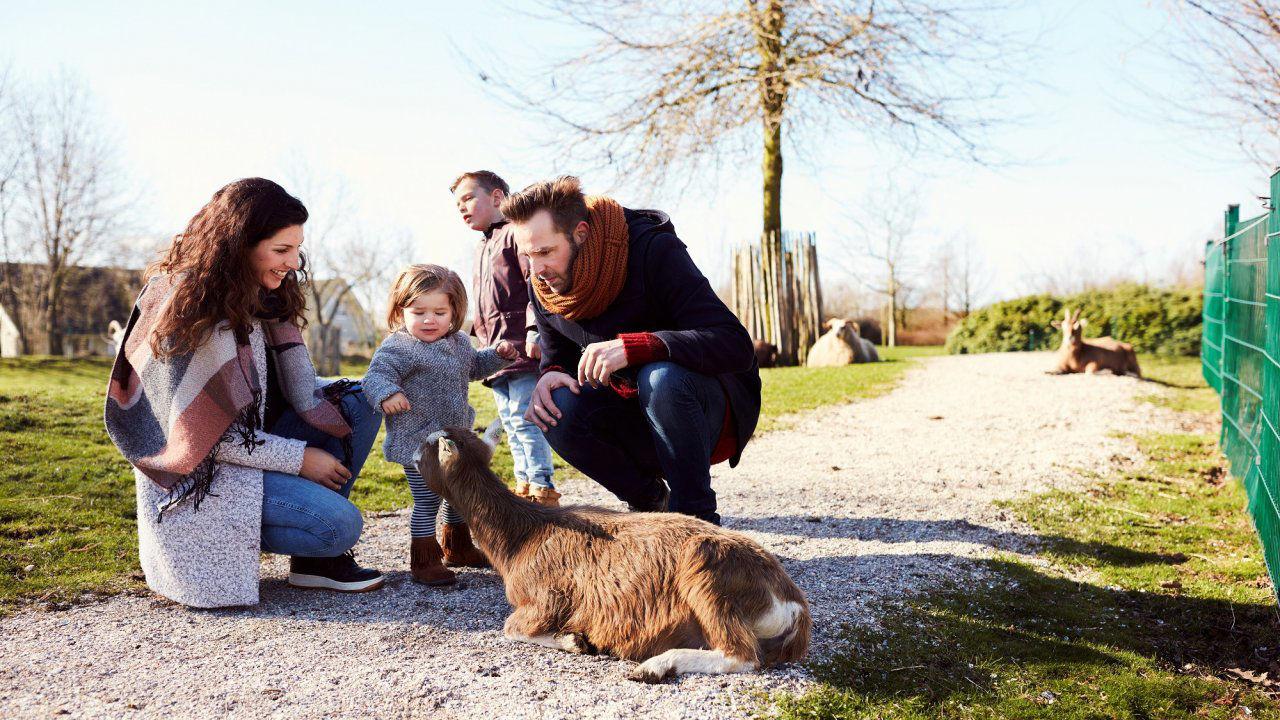 Product afbeelding: Center Parcs Parc Sandur in Emmen