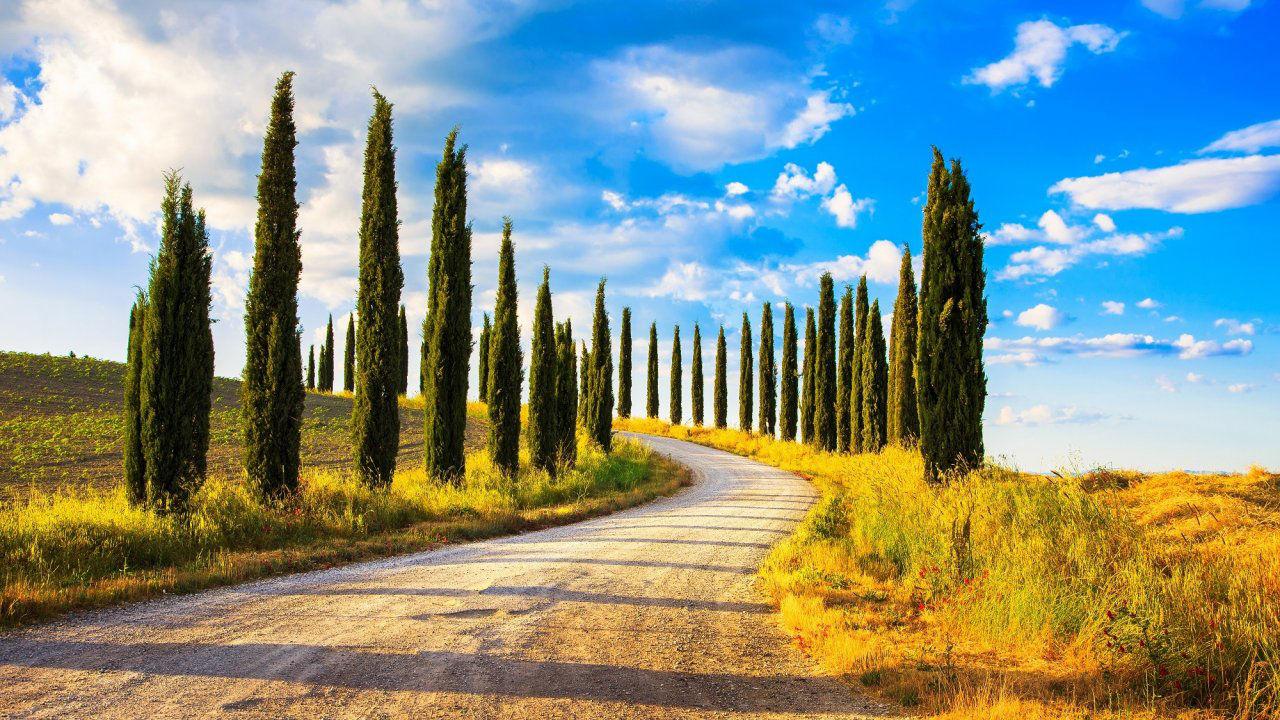Product afbeelding: Vakantiepark nabij Florence in de natuur