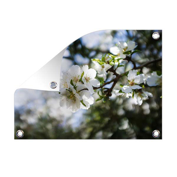 Product afbeelding: Tuinposter