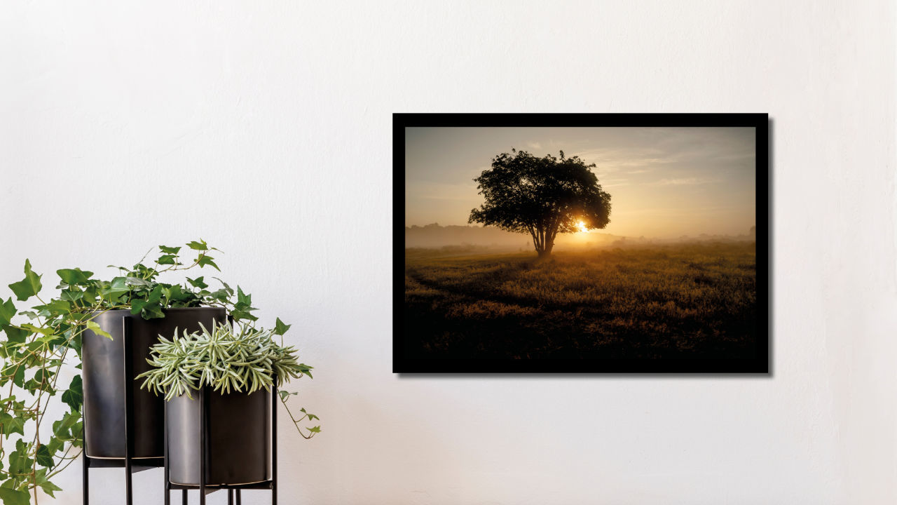 Product afbeelding: Fotoprint Zonsopkomst