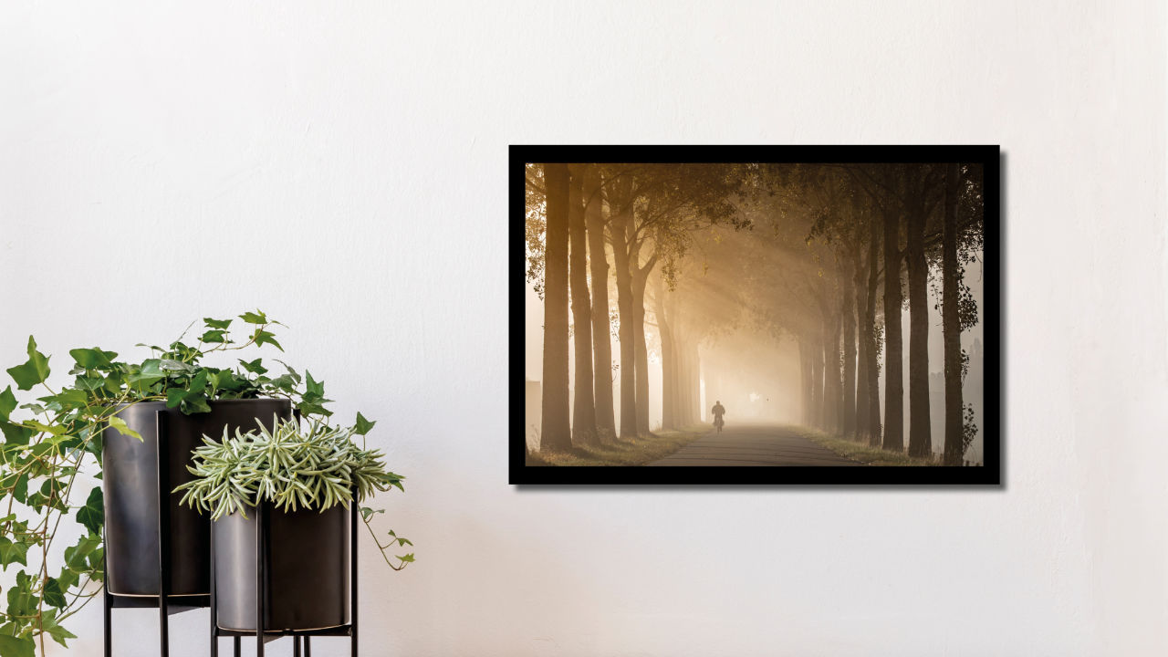 Product afbeelding: Fotoprint Zonnestralen in de dichte mist