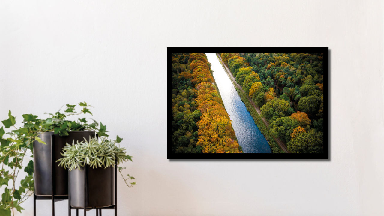 Product afbeelding: Fotoprint Bos in herfstkleuren