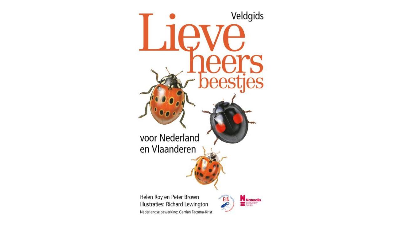 Product afbeelding: Veldgids lieveheersbeestjes voor Nederland en Vlaanderen