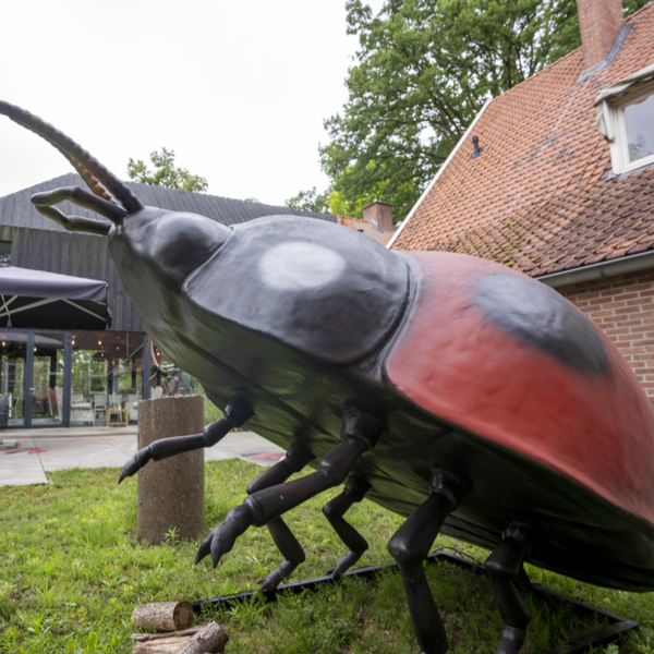 Product afbeelding: Big Insects