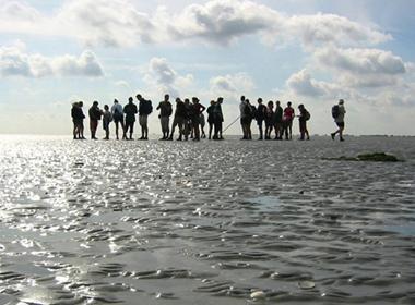 Afbeelding van Wadden Schiermonnikoog Dagarrangement