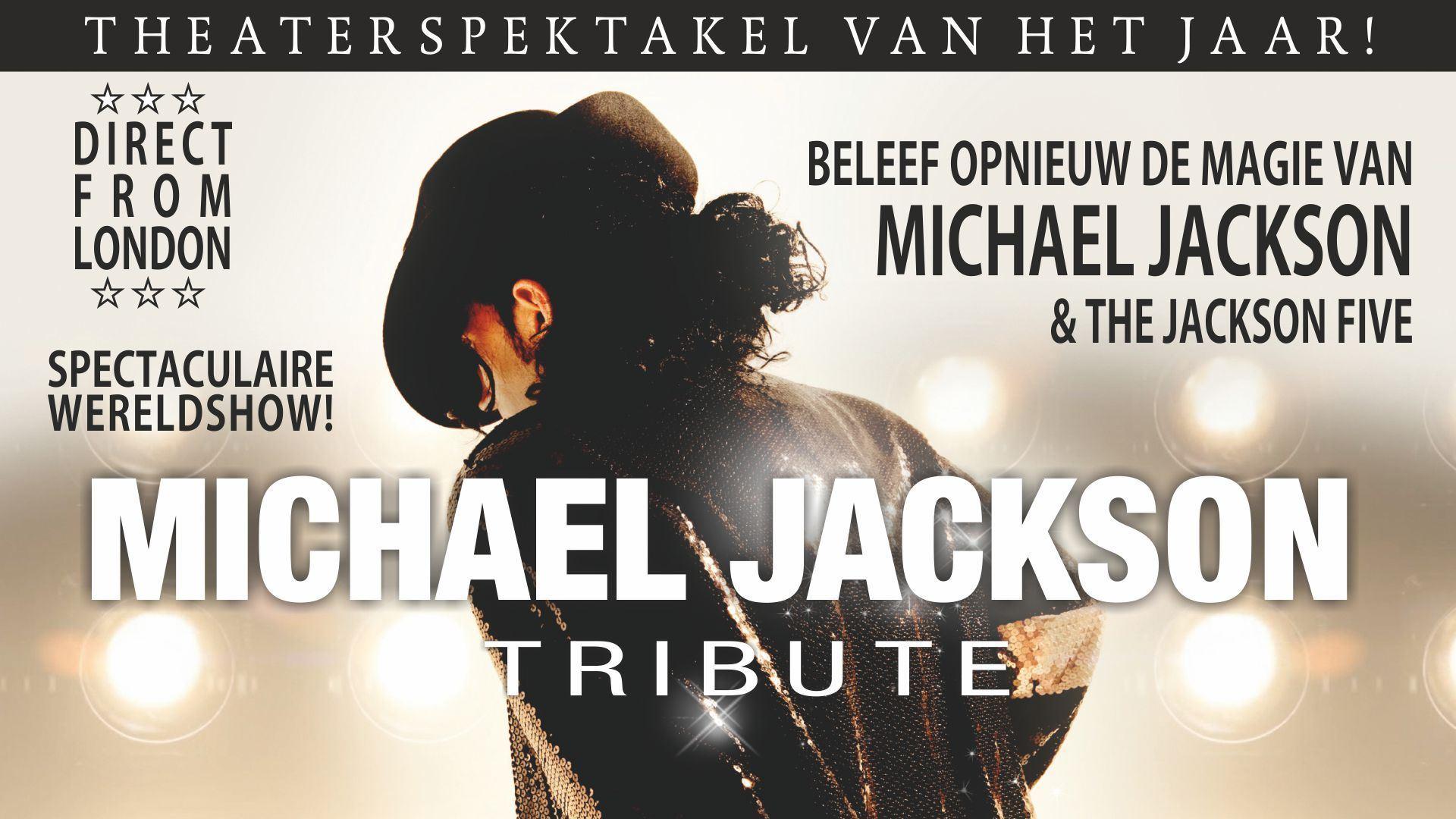 Afbeelding van The Michael Jackson Tribute wereldshow